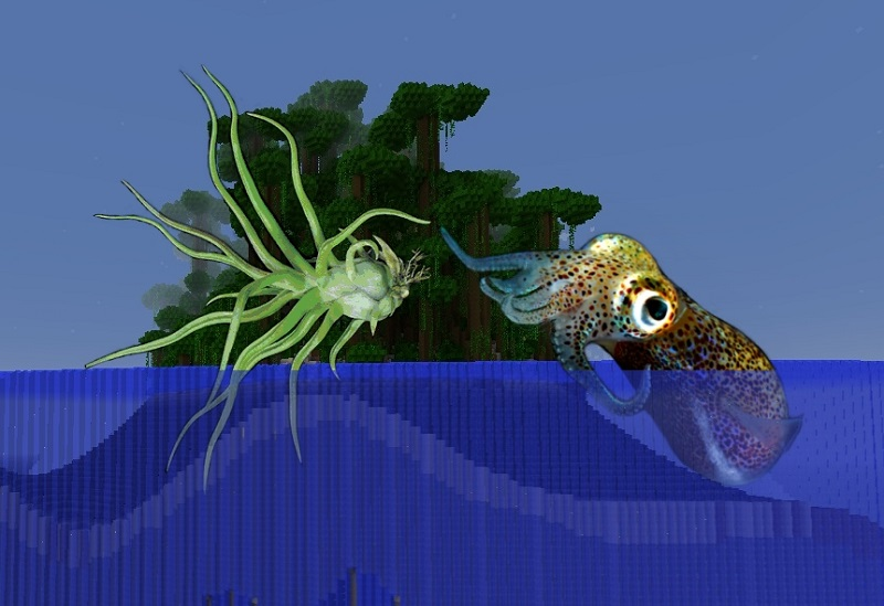 land and sea squid crop